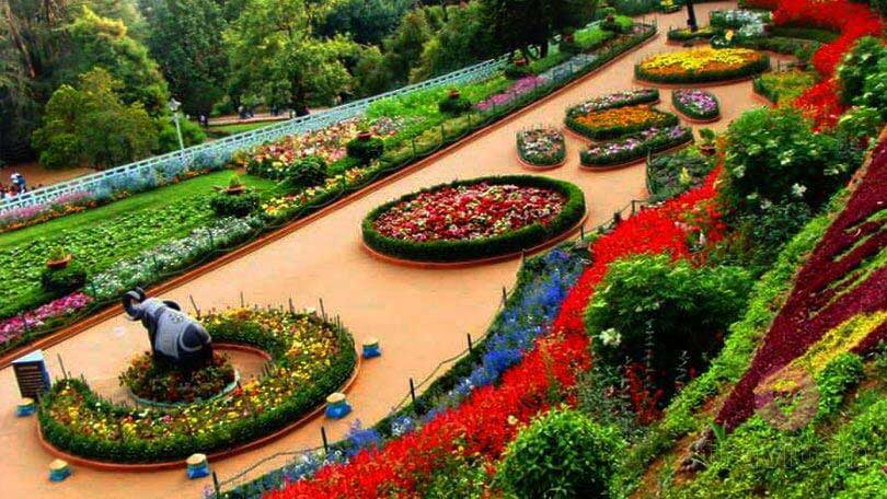Ooty Botanical Garden and flower show, Ooty b2b tour pacakges