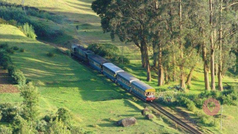 Nilgiri Misty Mountain Railway trip